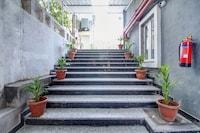 OYO Townhouse RCC Majestic 397 LB Nagar