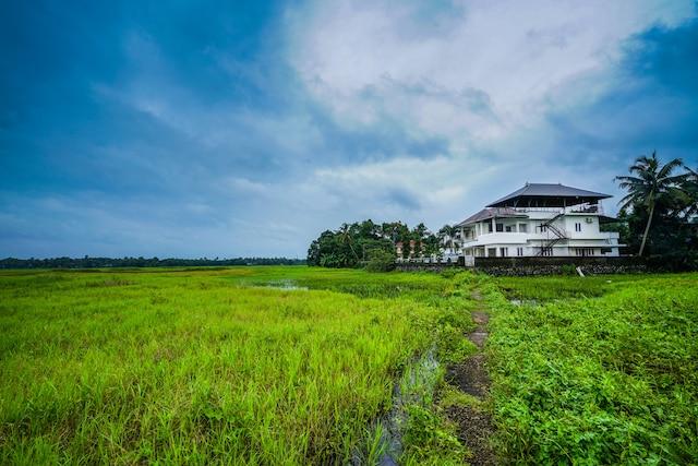 OYO 14953 Home Natures View 3BHK Pattathanam