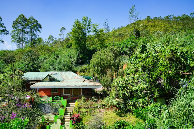 OYO 24955 Home Elegant Stay Tea Garden Munnar