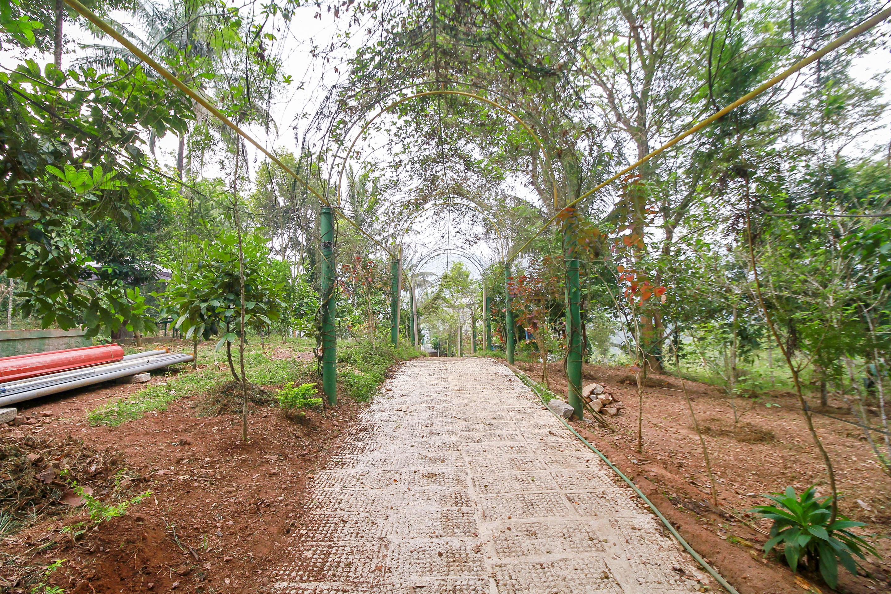 OYO Home 27632 Organic Farm Stay