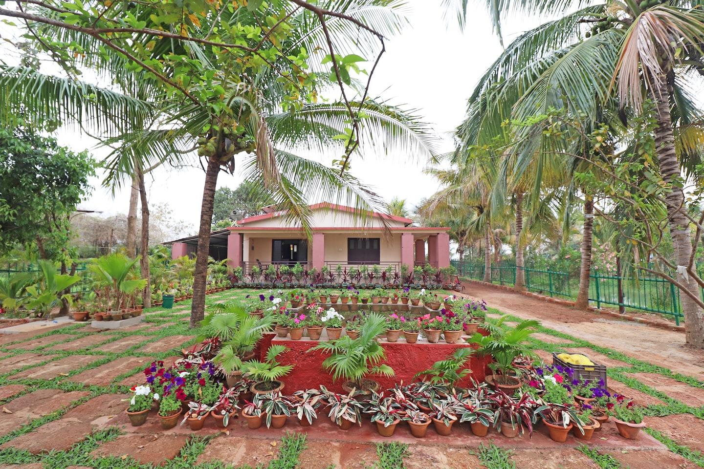 OYO 28756 Chandaka Nature Resort -1